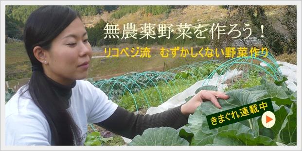 無農薬野菜を作ろう!